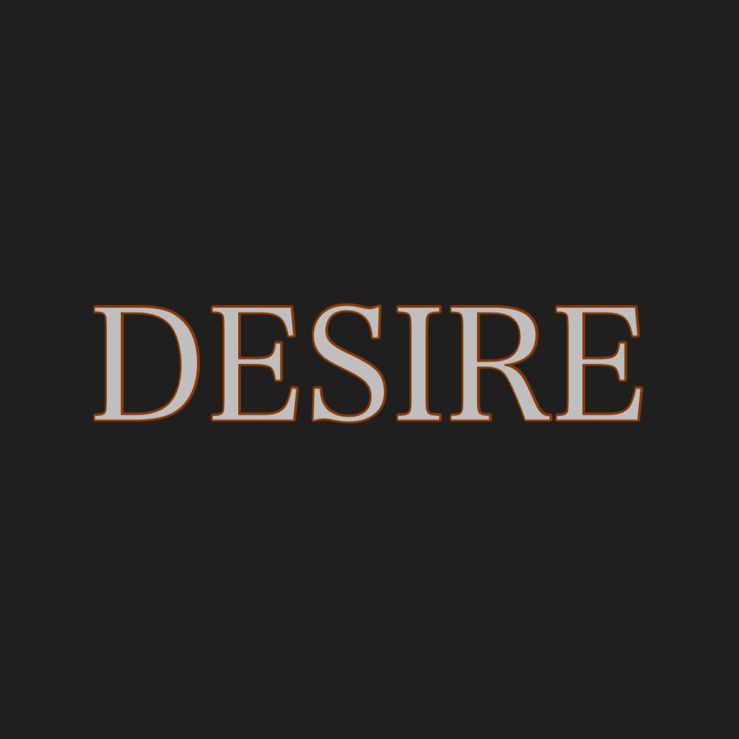 アルバム完成品【DESIRE】の画像